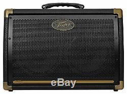 Peavey Ecoustic 208 30w Acoustic Guitar Amplifier 2-Ch Combo Amp+(2) 8 Speakers