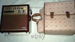 Suzuki SA-18 Amp Speaker for Guitar, Taishogoto with Rhythm, Power Adaptor (#02)